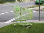shoppingthumb.jpg